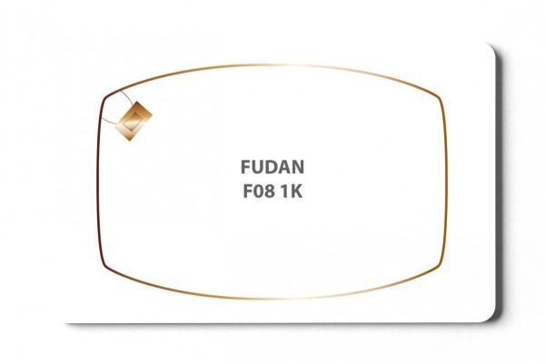 Fudan F08 1K